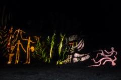 6 - Illuminations nocturnes (1)